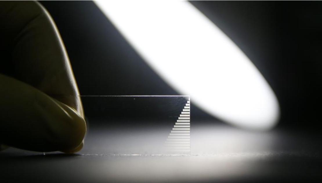 我国科学家制备出大规模光量子计算芯片