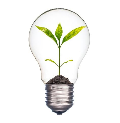 LED将成为众多领域里的香饽饽