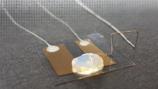 技术突破:世界最小单原子晶体管问世