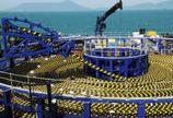 TE出售海底光缆业务,更加聚焦连接与传感