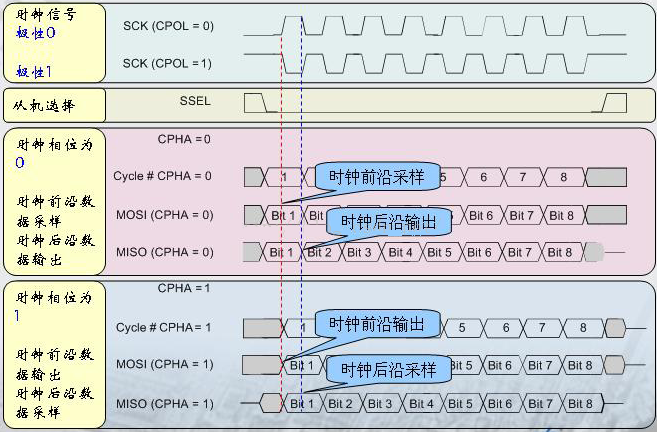 单片机SPI总线时序详解