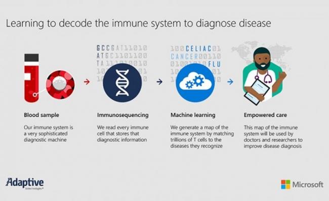 微软增强同Adaptive Biotechnologies合作 推进解码人体免疫系统