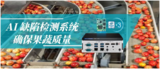 <font color='red'>AI</font> 缺陷检测系统,确保果蔬质量