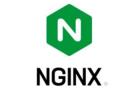 新思科技凭借Coverity Scan帮助NGINX确保代码质量和安全